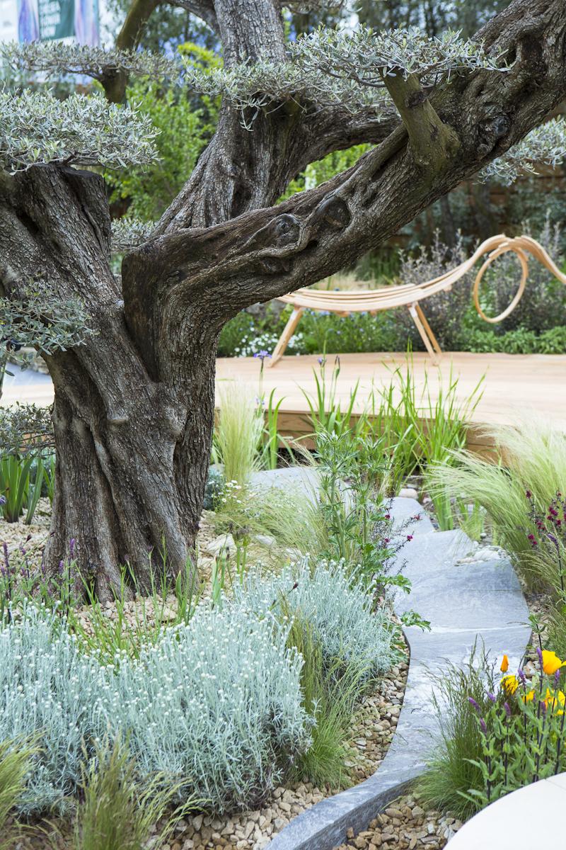 Landscape Design: Matthew Wilson Chelsea Flower Show 2015